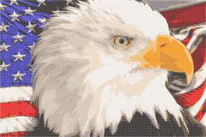 America the beautiful!  Our beloved eagle with the American flag as a backdrop