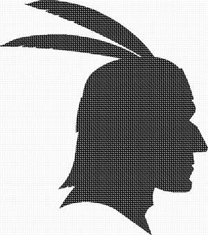 An American Indian silhouette complete with the feathers.