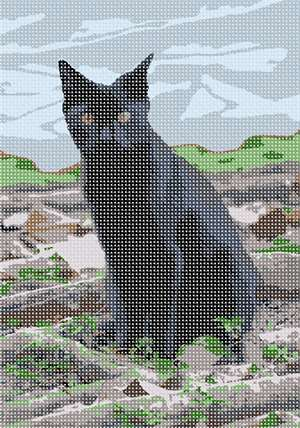 The ever popular black cat in needlepoint
