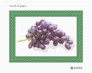 Juicy purple globules of fruit in a green twisted-rope frame.