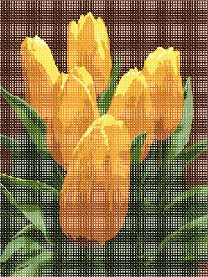 Six yellow tulips, in wonderfully contrasting natural colors.
