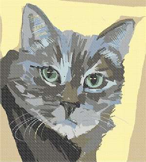 Closeup of a feline face looking intently at the artist.