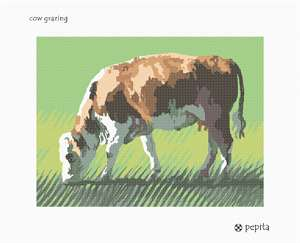 A fine looking cow munches placidly on green grass.