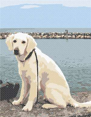 "Dog on a leash resting at the riverside.  Do you walk your dog near the ocean or on the boardwalk? Does your dog delight in watching the waves surrender to the sand at the beach?  This ""Dog at River"" is perfect for you."
