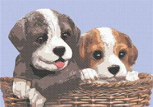 Two puppies in a wicker basket. 