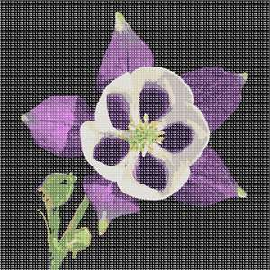 This exotic purple and Flowers and floral design are among the most popular needlepoint designs. People have been stitching flowers and floral motifs for hundreds of years.  Flowers are bright and pleasant, and most have underlying meanings to them. This white flower is open and eager.