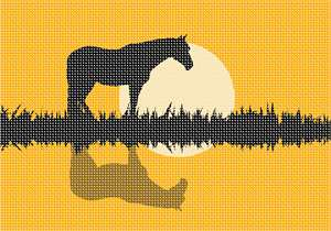 Horse in the pasture with the sun in the background. This silhouette needlepoint is easy and fun for a beginner.