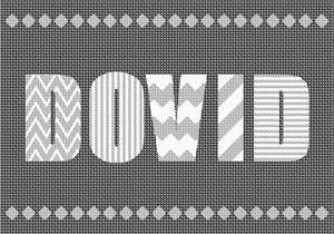 This is a personalized needlepoint that gets designed with a custom name of your choice.  It is easy to stitch since there are only three colors, but the different patterns on the letters make this eye catching and sophisticated. Availabe in various colors.  Stitch as a pillow or wall hanging.