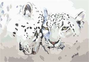 Pair of leopards in watercolor