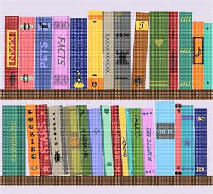 Books and more books in needlepoint