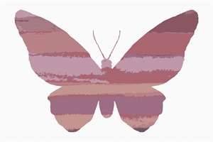 A variegated butterfly in a combination of earth tone and mauve shades