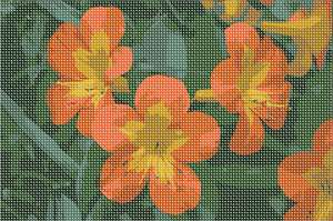 Orange and yellow flowers so vivid and fresh you can almost touch their velvety petals. Flowers and floral design are among the most popular needlepoint designs. People have been stitching flowers and floral motifs for hundreds of years.  Flowers are bright and pleasant, and most have underlying meanings to them.