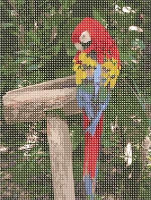 This parrot is showing off its magnificent colors.  Enjoy stitching this colorful design.