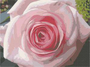 A luscious pink rose to stitch up for spring.