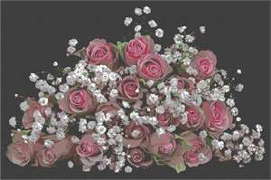 A bouquet of roses and baby's breath