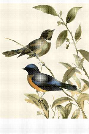 The Rufous-bellied Niltava. Based on an 1850 John Gould painting.
