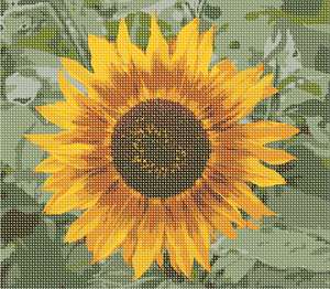 A sunflower up close.  See the details in the shading.  