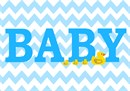 Baby boy nursery decor complete with rubber duckies