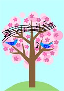 Birds chirping and singing a melody in a blossoming tree