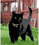 Black Cat (Large)