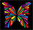 Butterfly Geometry Colors