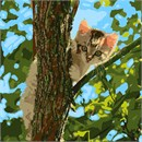 Cat Up The Tree