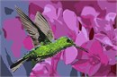 Green Crowned Hummingbird Oleander Flowers