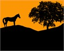 A horse standing near a tree in silhouette.