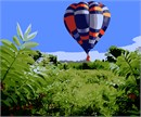 Hot Air Balloon Over Meadow