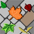 Leaves On Cobblestones (Large)
