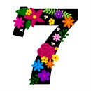 Number Seven Primary Floral