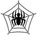 An eight-legged arachnid centered on its web.