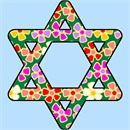 Star of david filled in with a pretty floral pattern.