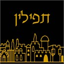 A tefillin bag with the Jerusalem skyline lighting up the night.  A classic beauty in needlepoint tefillin designs.