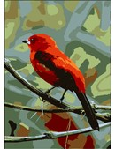 A small, very red bird perched on a twig.