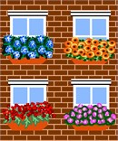 Four different window boxes, overflowing with beautiful flowers.
