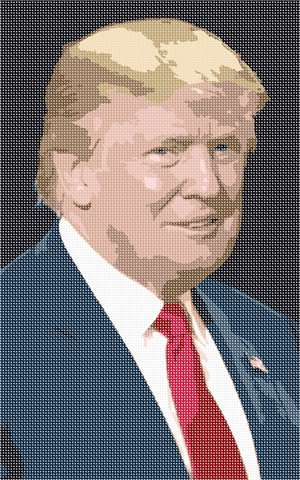 Portrait of Donald J. Trump.