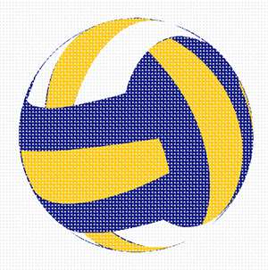 Volleyball in needlepoint