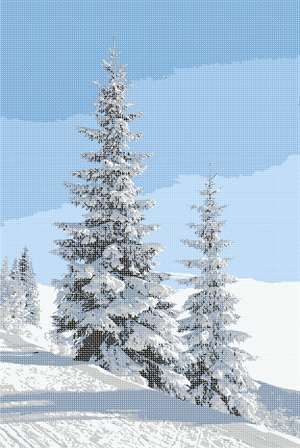 Snow, evergreen trees, what winter fun!
